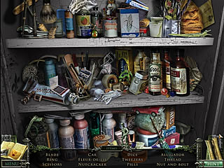 Mystery Case Files 13th Skull hidden object shelve