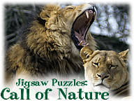 Call of Nature: Free Jigsaw Puzzle